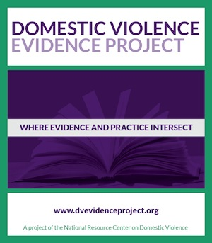 Domestic Violence Evidence Project